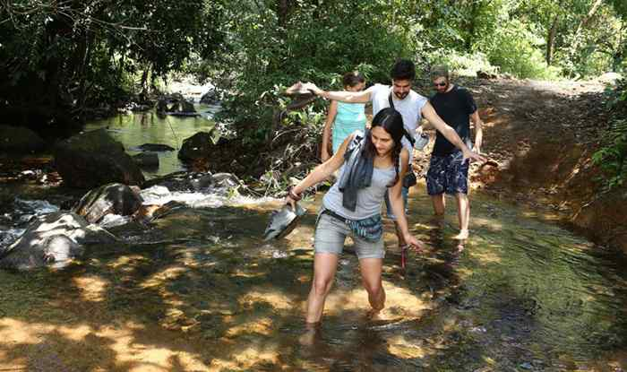 Swimming activities - Resort in Wayanad